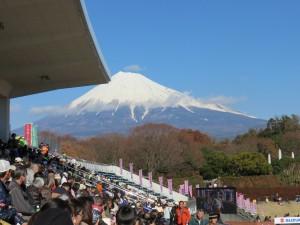 富士山とスタンド